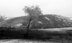 Rocas de Rosarito IV.